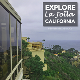 La Jolla Real Estate Experts | Team SchuCo