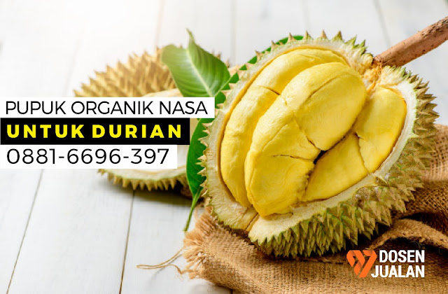 Pupuk Organik Nasa untuk Durian