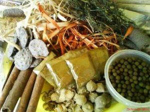 Cara Alami Mengobati Ejakulasi Dini Dengan Herbal Alami Yang Ampuh