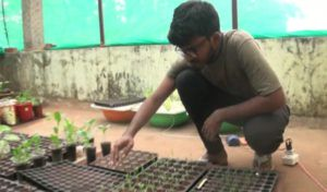 organic farming without soil by ankit mohanty