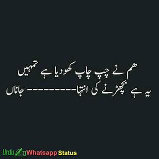 Best Urdu Status
