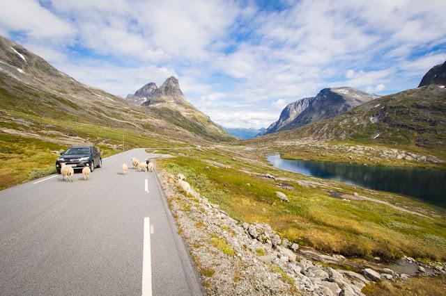 Strada verso Andalsnes