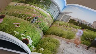 GGN Landscapes 1999-2018: espacios ajardinados dinámicos en contextos urbanos complejos