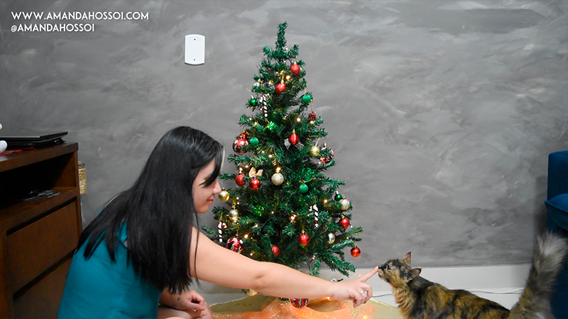 Amanda Hossoi e Meimei montando Natal