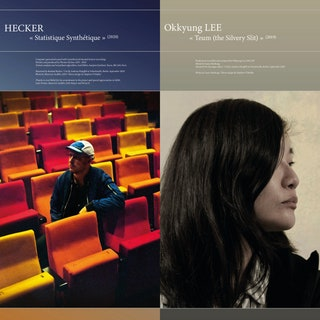 Hecker/Okkyung Lee - Statistique Synthétique / Teum (the Silvery Slit) Music Album Reviews
