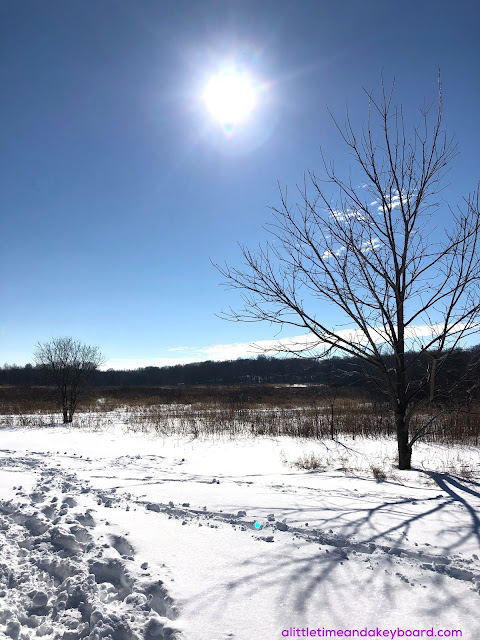 The brilliant winter sun awes over snow covered Burnidge Forest Preserve.