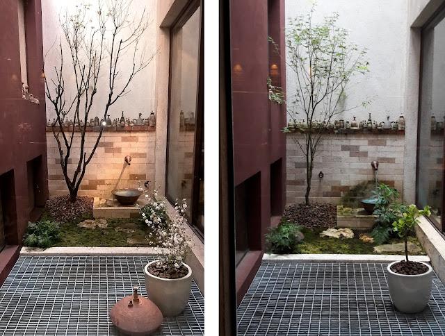 jardim de inverno, jardim japonês, plantas para jardim japonês, paisagismo atelier hideko honma