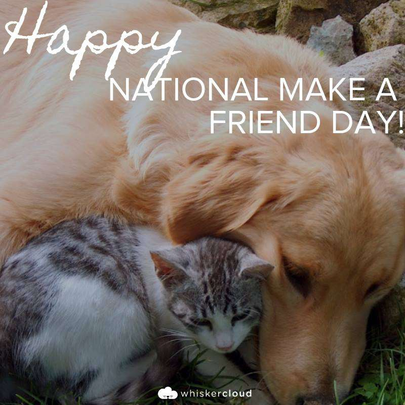 National Make a Friend Day Wishes Sweet Images