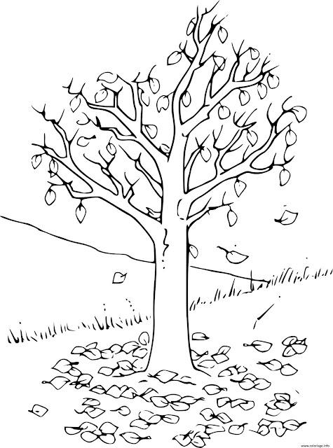 صورة شجرة الخريف للتلوين
