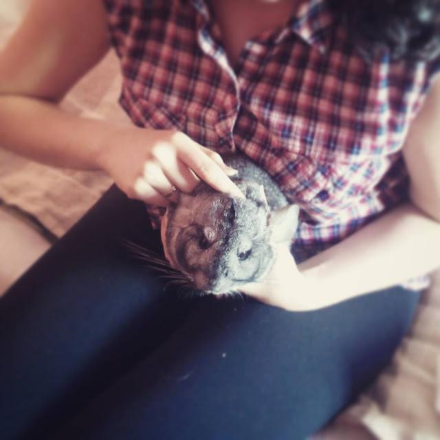 http://hairwitchproject.blogspot.com/2016/06/azjatycka-pielegnacja-anasza-polska.html