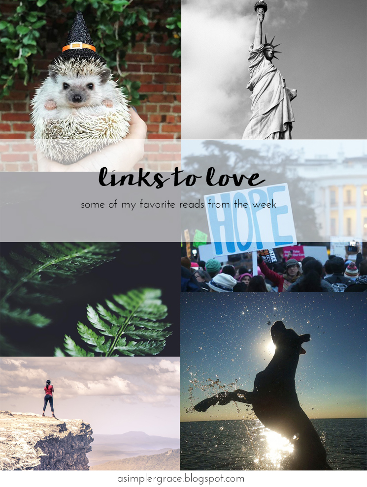 My favorite reads from the week - Links to Love | 81 #linkstolove #fridayfavorites - A Simpler Grace