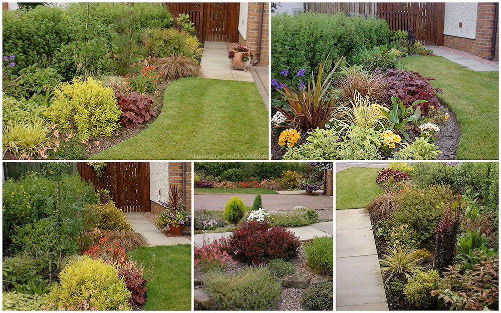 spring and summer flowering borders