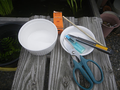 挿し穂 道具