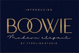 Boowie Modern Minimalist Elegant Font