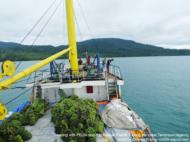 Adventure tour to West Papua of Indonesia