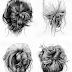 Como fazer tranças no cabelo as mais belas tranças Hairstyles em 2019