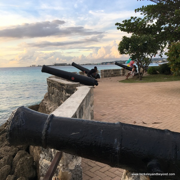 cannon at Charles Fort at Hilton Barbados Resort in Barbados