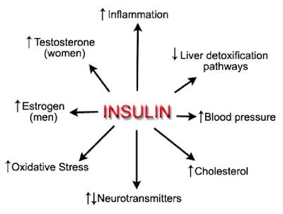 kesan insulin
