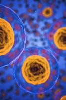 berberine-inhibits-coronavirus