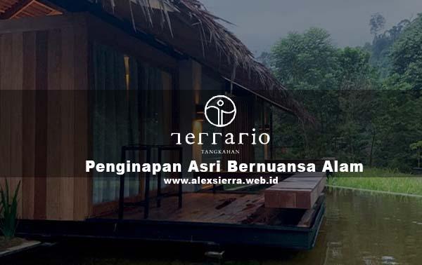 Terrario Tangkahan - Penginapan Asri Bernuansa Alam