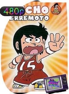 Chicho Terremoto (1981) Temporada 1 [480p] Castellano [GoogleDrive] PGD