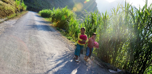 Ha Giang - A perfect alternative to Sapa Trekking