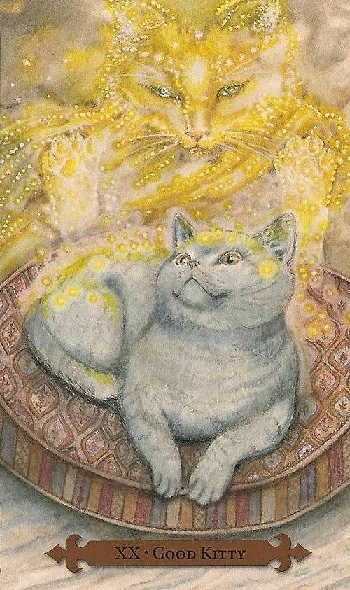 Tarot Notes: REVIEW: Mystical Cats Tarot