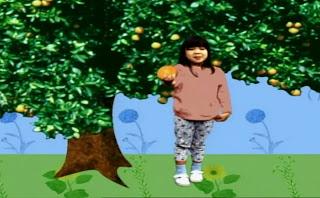 Elmo's World Flowers, Plants and Trees Quiz