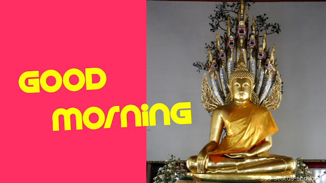 good morning images lord buddha