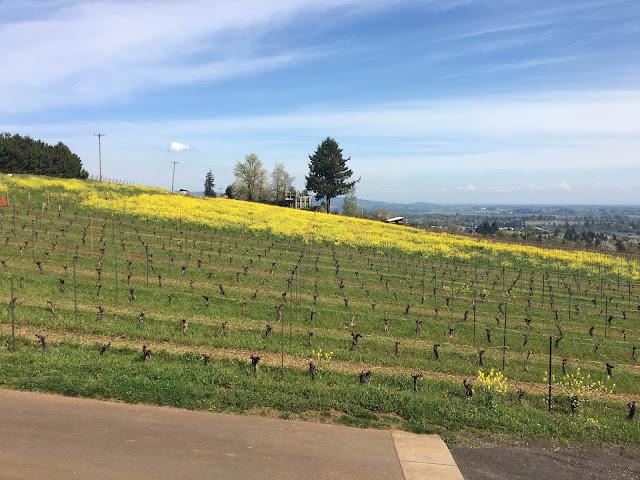 Winderlea Vineyard, Oregon   A Hoppy Medium