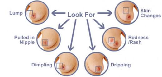 Very small breast pics