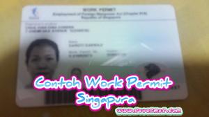 Contoh Work Permit Singapura