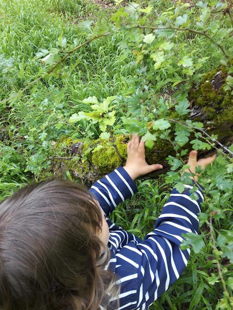 chasse tresor sensorielle activité enfant nature exterieur foret