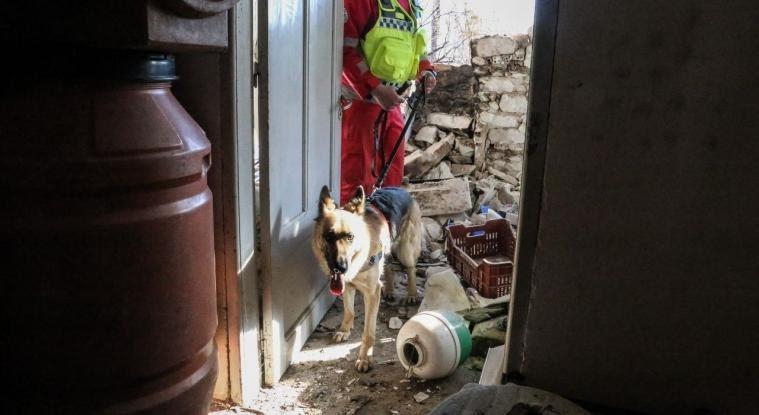 Σεισμός Ελασσόνας: «Κόκκινα» εκατοντάδες σπίτια, αντιπαράθεση για τα μέτρα κατά του ιού στη Θεσσαλία