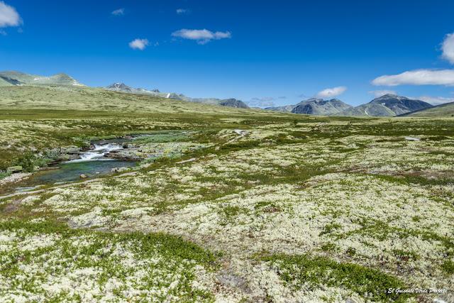Praderas de Rondane - Noruega, por El Guisante Verde Project