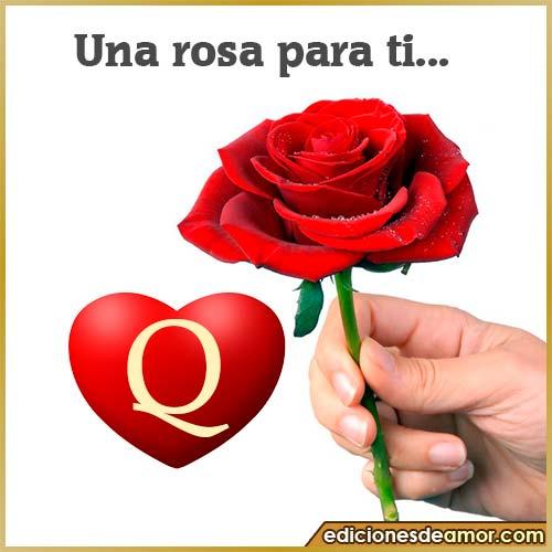 una rosa para ti Q