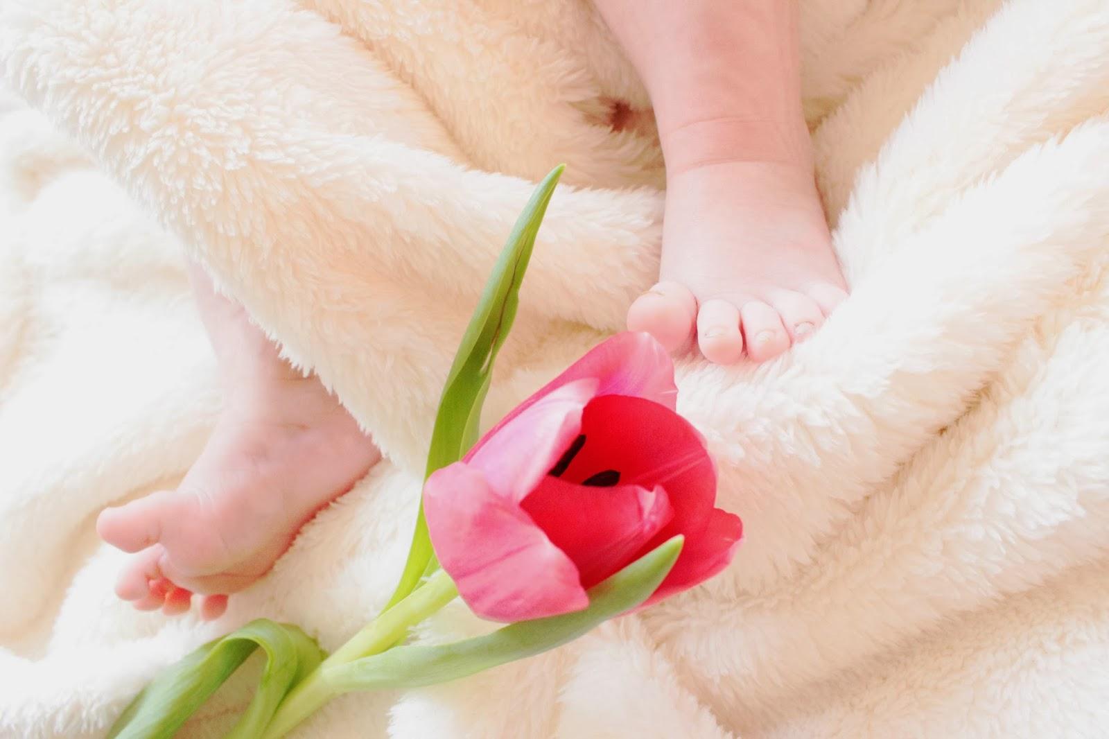 Mein Mama Tagebuch Aus Meinem Gummibärchen Wurde Ein Baby