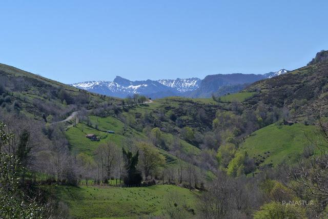 Collada de Arnicio - Reserva de La Biosfera - Asturias