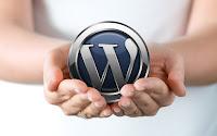 после установки WordPress