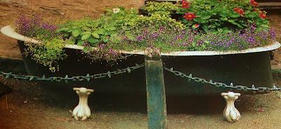 старая ванна отличный контейнер для растений