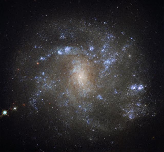 Spiral Galaxy NGC 2500