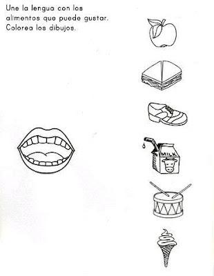 Aprendamos Pintando Los 5 Sentidos