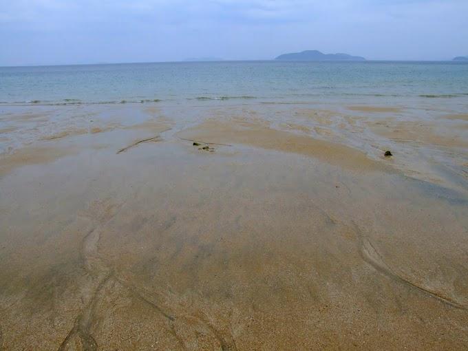 055 #海 #砂浜 #風景 #夏