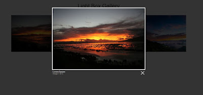 Light box image gallery