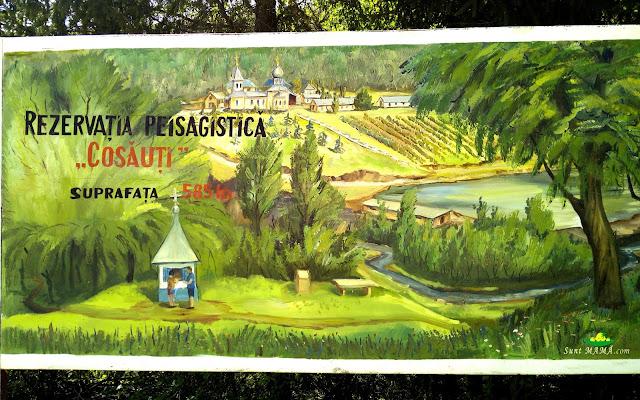 vizita-la-rezervatia-peisagistica-cosauti.jpg