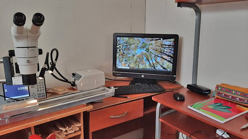 Universitaria arma laboratorio de botánica en su pensión magallánica