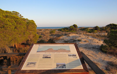 Carteles explicando el origen de las dunas