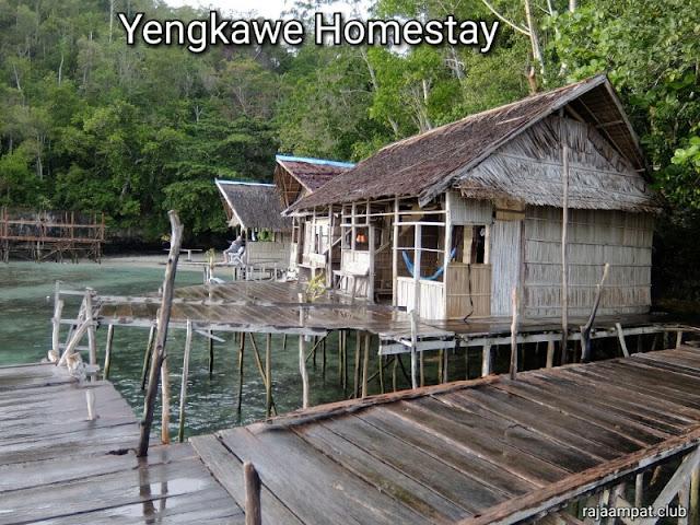 Sightseeing, snorkeling, and birding tour in Raja Ampat