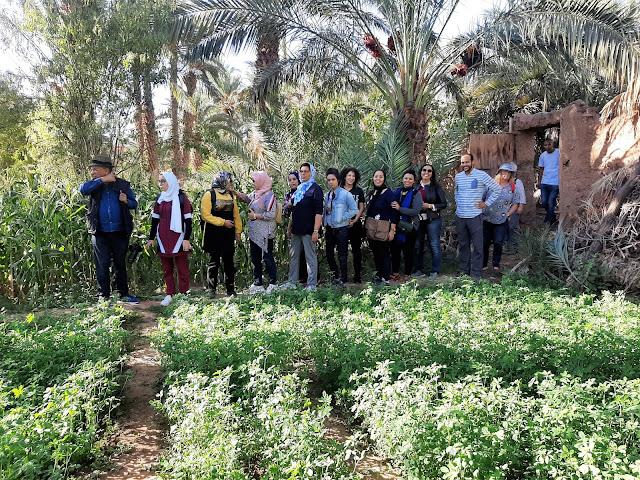Un stage de terrain à zagora au profit des étudiants du Master SOIS à la faculté ain chock de Casablanca