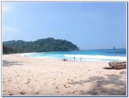 Lokasi Pantai Sendiki Malang